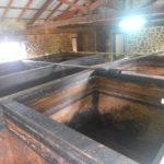la fermentation dure 8 semaines